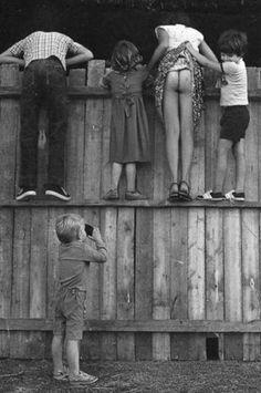 #Humor / Was ist da so interessant in Nachbar's Garten?
