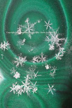 Real Snowflake Photography