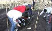 Jornal Hoje - Crônicas de Nova York mostra uma plantação no meio da cidade | globo.tv