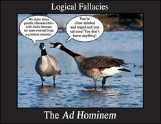 ad hominem - ...explanation on logical fallacies, ad hominem attacks etc. on this site