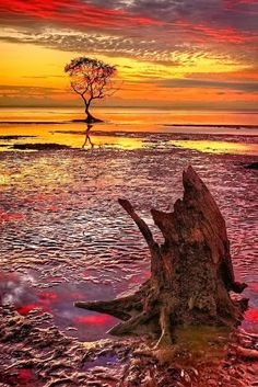 Beachmere, Australia...Beachmere is a suburb north of Brisbane, the state capital of Queensland, Australia.  The origin of the suburb name is from an early residence by the name of Beachmere meaning a beach upon marshy ground