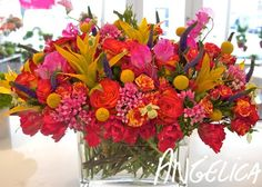 Angelica Flowers & Events