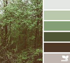 woodsy hues (design seeds) minus the dark green and dark brown, color scheme for up bathroom. Maybe use green color we currently have in our bathroom and library on Design Seeds, Bedroom Green, Bedroom Colors, Baby Bedroom, Woodsy Bedroom, Woodsy Nursery, Green Colour Palette, Green Colors, Color Palettes