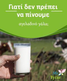Γιατί δεν πρέπει να πίνουμε αγελαδινό γάλα;  Το #αγελαδινό γάλα είναι μια από τις πιο δημοφιλείς τροφές, με τη μεγαλύτερη #κατανάλωση στον πλανήτη· εδώ και #εκατοντάδες χρόνια αποτελεί ένα βασικό κομμάτι της ανθρώπινης διατροφής. Αληθεύει το γεγονός ότι αυτή η τροφή περιέχει ορισμένα θρεπτικά συστατικά τα οποία είναι απαραίτητα για το σώμα μας, όπως είναι το ασβέστιο. Ωστόσο, πρόσφατες μελέτες έχουν δείξει. #ΠΑΡΆΞΕΝΑ Mind Body Soul, Glass Of Milk, Medicine, Cooking, Healthy, Food, Kitchen, Eten, Medical