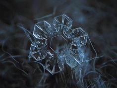 Snowflake photo print