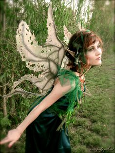 Willow Tree Fairy » Firefly Path