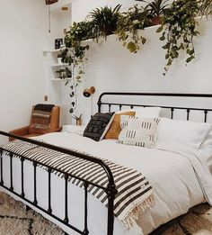 Black bed with a row of plants