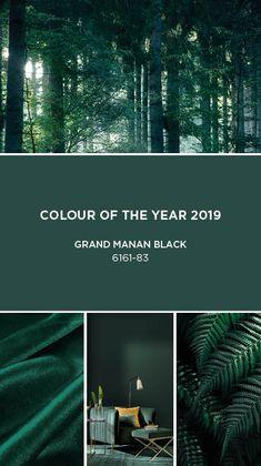 Paint Colours: Colour Palette, Trends & Decor Inspiration - Decoration For Home Green Paint Colors, Wall Colors, House Colors, Green House Color, Green Colour Palette, Bedroom Green, Green Rooms, Colour Schemes, Color Trends