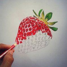 Billedresultat for strawberry pencil drawing