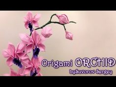How to make Origami Orchid by Suvorov Sergey - Yakomoga Origami tutorial - YouTube