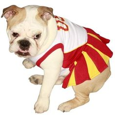 USC Trojans White Pet Cheer Dress for Leia