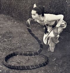 Historical footage of snake charmer Saya Hnin-Mahla dancing with a king cobra in Burma between the and centuries recorded by the British field exploration photography group. Old Pictures, Old Photos, Vintage Photos, Photo D Art, Foto Art, Potnia Theron, Creepy, Snake Art, Photo Libre