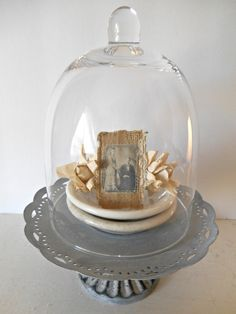 Instant Vignette Cloche Display Ironstone Dishes