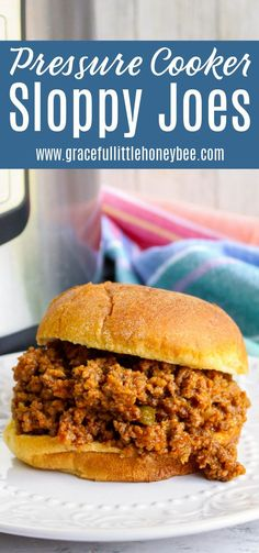Best Instant Pot Recipe, Instant Recipes, Air Fryer Cooking Times, Easy Beef Stew, Pressure Cooking Today, Potted Beef Recipe, Sloppy Joes Recipe, Incredible Recipes, Freezer Cooking