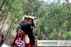 Por más de tres horas y gracias al buen clima, estudiantes, administrativos y familiares iniciaron el recorrido por la vía del tren, recorrido que les permitió maravillarse con los hermosos paisajes y bastante vegetación del municipio de Cundinamarca, ubicado en la provincia de Almeidas a 59 km de Bogotá.