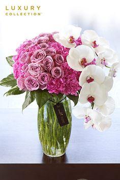 Luxury rose and phalaenopsis flower arrangement