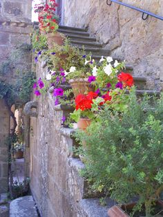 Cortona, Italy. Under the Tuscan Sun.