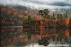 Loch Beinn a Mheadhoin Glen Affric  Landscapes photo by PascalBobillon http://rarme.com/?F9gZi
