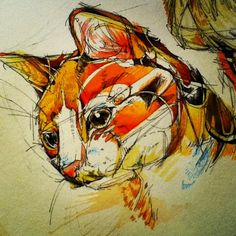 Catface. I am in love with her work, whoever she is (Abby Finch?) Assured, gestural, powerful linework filled sparingly with the richness of watercolor. Love love love.