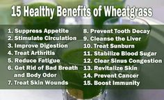 Wheatgrass benefits are so MANY. BioCoffee makes it easy, TASTY and convenient in one cup. Get your box of BioCoffee today and tell us how it helped you! #biocoffee12day www.biocoffee.com