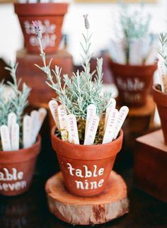 Herb marker escort cards | Photography by Lavender & Twine