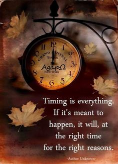 Timing is everything. If it's meant to happen, it will, at the right time for the right reasons. -Author Unknown