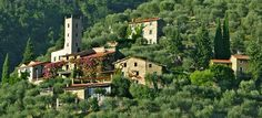 House vacation rental in Pieve Di Camaiore from VRBO.com! #vacation #rental #travel #vrbo