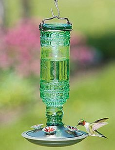 "Pressed Glass Hummingbird Feeder.   Martha, who lives in Stowe, Vermont, tells us, ""For the past 4 years, hummingbirds have returned to my feeder on exactly the  same day – May 8th! How do they do that?… Time to put your hummingbird feeders out!"""