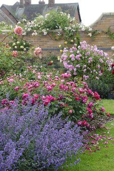 Схемы розариев для Вашего сада