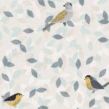 Birdsong - Birds