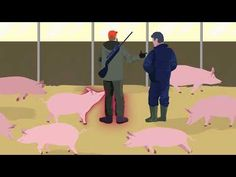 EFSA's new practical guide on African swine fever: what it is and how to protect domestic pigs from infection. From causes and symptoms to precautionary meas. Pig Feed, Pig Farming, First Step, Science And Technology, Farm Animals, African, Youtube, Om, News