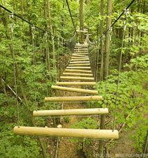 May 2020 - Get your adrenaline pumping at Treetop Trekking Huntsville, the most exciting adventure activity in Muskoka! Zipline Park, Zipline Adventure, Forest Adventure, Adventure Travel, Alabama Tennessee, Huntsville Alabama, Hiking With Kids, Sweet Home Alabama, Adventure Activities