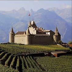 Dzień dobry, wszyscy i dobry tydzień.  Pomnik ten jest nazywany Chateau d'Aigle został zbudowany w XIII wieku w kantonie Vaud w małej miejscowości Aigle gdzie winnice są piękne i pyszne wina Chasselas.  🇺🇸Hi wszyscy z zamku d'Aigle zamku zbudowanego w XIII wieku otoczonego winnicami Chasselas.  Życzę wszystkim udanego weekendu!  #lucianamotasommeliere #chasselas #swisswine #switzerland #swisstraditions #vaud #mondialduchasselas #vinblanc #suisse #cheers #vinsuisse #chateaudaigle…