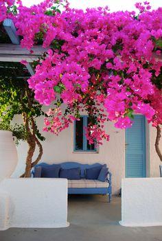 Santorini Greece Photo by Sheri Ritchie
