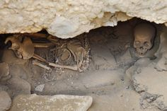 Bones, believed to belong to the pyramid builders, are seen in a tomb near the site of the Pyramids, in Giza, Egypt, Monday, Jan. 11, 2010. Egyptian archaeologists discovered a new set of tombs belonging to the workers who built the great pyramids, shedding light on how the laborers lived and ate more than 4,000 years ago,