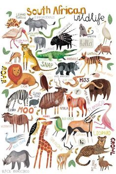 Illustration Friday :: Children's Book Illustrator - Pippa Curnick - My list of beautiful animals Image Deco, African Animals, Children's Book Illustration, Watercolour Illustration, Animal Illustrations, Childrens Books, Illustrators, Character Design, Drawing People