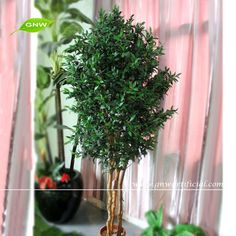 GNW BTR042 High quality Indoor Decoation Plant Plastic Fake Ficus Microcarpa Tree