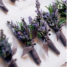 Boutonniere with lavender, rosemary, sage, olive leaves