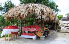 Fruit and hammacks on the road to Tulum-Quintana Roo, Mexico