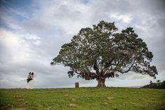 Goldie Room, Waiheke Island, New Zealand Wedding Wishlist, Waiheke Island, Casual Wedding, Wedding Inspiration, Elegant, Photography, Weddings, Room, Classy