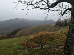 hrvatsko zagorje in late november