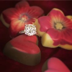 With Valentines Day around the corner, romance is in the air. Why not show someone you love them with this stunning engagement ring, available at Rich Diamonds.  http://www.richdiamonds.com/catalogue/diamond--engagement-rings-jewellery/77  #Engagement #Ring #Diamond #Ladies #Love #Luxury #Romance #Valentines #Iloveyou #Heart #MarryMe #Wedding #RichDiamonds #NewBondSt #London