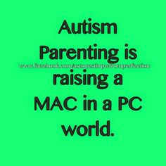 As a mom to two boys with autism, I can say this is the truth!