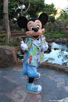 Mickey in Aulani, Hawaii