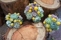 Sugar Bee Flowers: Succulent and billy button wedding