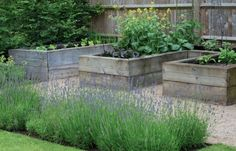 Raised beds garden Charlotte Rowe London ; Gardenista