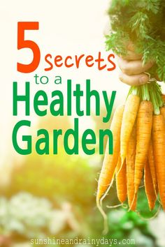 Gardening is actually quite fun and rewarding but that doesn't mean you won't encounter challenges. Garden challenges are easy to overcome, and even prevent, if you know a few secrets to a healthy garden! We've learned the hard way and you can learn from our challenges!
