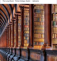 now that's a library