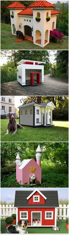 5 amazing dog villas.... my kyo would love the first one =D