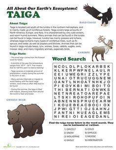 Worksheets: Taiga Ecosystem